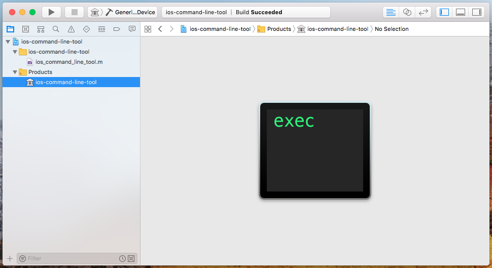 Xcode with an iOS executable